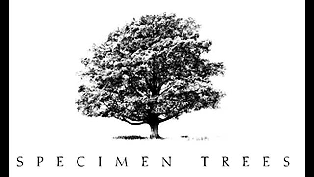 Specimen Trees logo