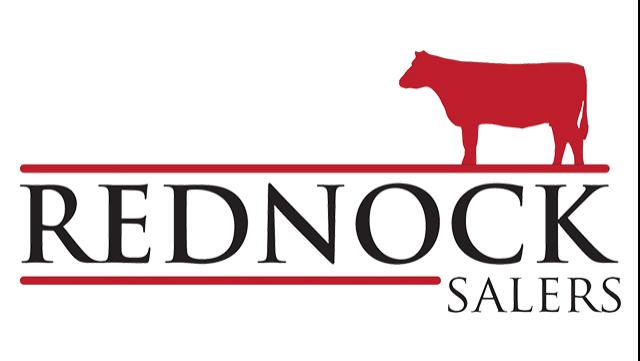 Rednock Salers logo